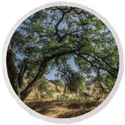 Trees Of The Forest 4 Round Beach Towel