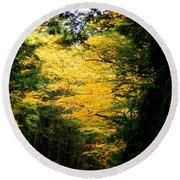 Trees Over The Flumes Gorge Round Beach Towel
