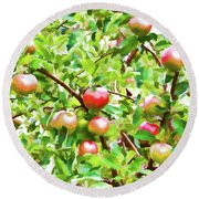 Trees With Red Apples In An Orchard Round Beach Towel