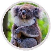 Treetop Koala Round Beach Towel