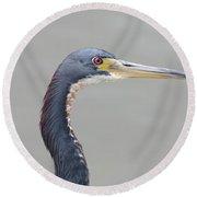 Tri Colored Heron Round Beach Towel