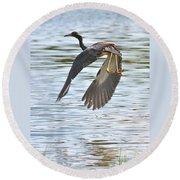 Tri Colored Heron Over The Pond Round Beach Towel