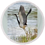Tri Colored Heron Takeoff Round Beach Towel