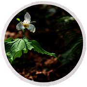 Trillium In The Woods Round Beach Towel
