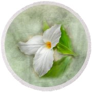Trillium Wildflower  Round Beach Towel