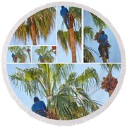 Trimming The Palm Trees Round Beach Towel