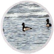 Trio Of Ducks Round Beach Towel