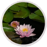 Trio Of Pink Lotus Waterlilies Round Beach Towel