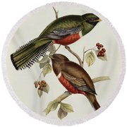 Trogon Collaris Round Beach Towel by John Gould