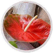 Tropical Beauty Round Beach Towel
