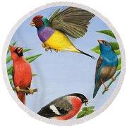 Tropical Birds Round Beach Towel