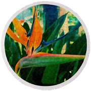Tropical Eden Round Beach Towel