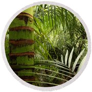Tropical Forest Jungle Round Beach Towel