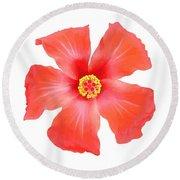 Tropical Hibiscus Flower Vector Round Beach Towel