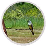 Tropical Kingbird Round Beach Towel