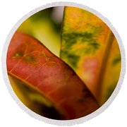 Tropical Leaf Abstract Round Beach Towel
