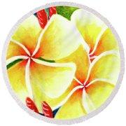 Tropical Plumeria Flowers #226 Round Beach Towel