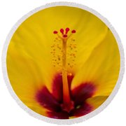 Tropical Reach Round Beach Towel