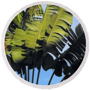 Tropical Sunlight And Shadow Round Beach Towel