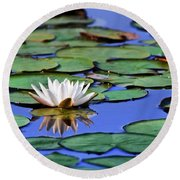 Tropical Water Lily Round Beach Towel