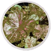 Tropicals Round Beach Towel