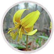 Trout Lily - Erythronium Americanum  Round Beach Towel