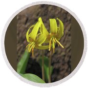 Trout Lily 1068 Round Beach Towel