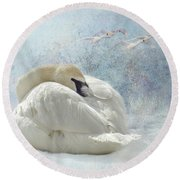 Trumpeter Textures #1 - Swan Feather Round Beach Towel by Patti Deters