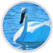 Trumpeter Swan Impressions Round Beach Towel