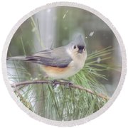 Tufted Titmouse - A Winter Delight Round Beach Towel