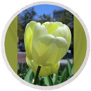 Tulip 0761 Round Beach Towel
