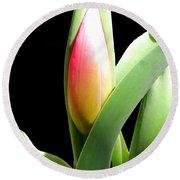 Tulip 1 Round Beach Towel