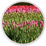 Tulip-1 Round Beach Towel