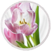 Tulip Bloom 3 Round Beach Towel