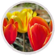 Tulip Celebration Round Beach Towel by Karen Wiles