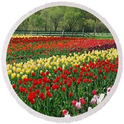 Tulip Fields Round Beach Towel
