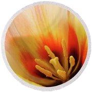 Tulip Flower Artwork 31  Tulips Flowers Macro Spring Floral Art Prints Round Beach Towel