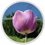 Tulip Flower Landscape Art Print Purple Tulips Baslee Round Beach Towel