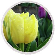 Tulip Flowers Artwork Tulips Art Prints 10 Floral Art Gardens Baslee Troutman Round Beach Towel
