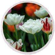 Tulip Flowers Round Beach Towel by Pradeep Raja Prints