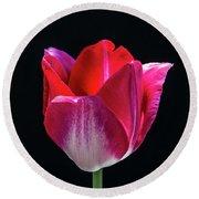 Tulip In Profile. Round Beach Towel