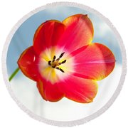 Tulip In The Sky Round Beach Towel
