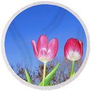 Tulip Panorama Round Beach Towel