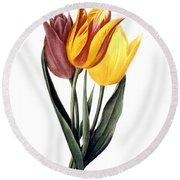 Tulip (tulipa Gesneriana) Round Beach Towel