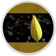 Tulip With Guest Round Beach Towel