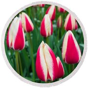 Tulips 7 Round Beach Towel