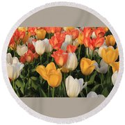 Tulips Ablaze With Color Round Beach Towel