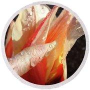 Tulips Artwork Flowers Floral Art Prints Spring Peach Tulip Flower Macro Round Beach Towel