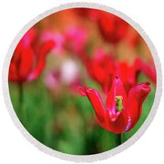 Tulips At Honor Heights Round Beach Towel