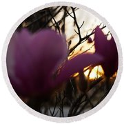 Tulips At Sunset I Round Beach Towel